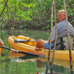 Kayak Tours