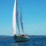 Manawa Nui Sailing Charter in the Gulfo Dulce Costa Rica